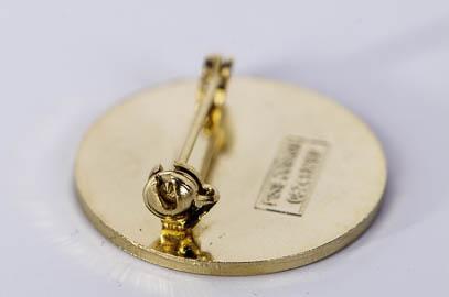 Pin med brosch-lås